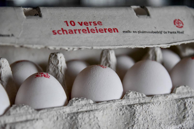 Uitleg soorten eieren
